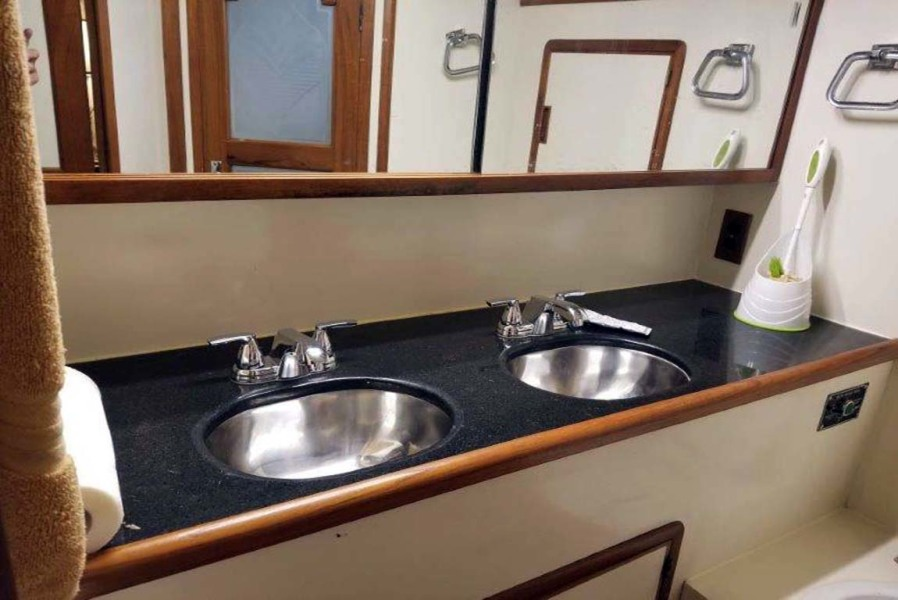 Master His and Hers Sinks