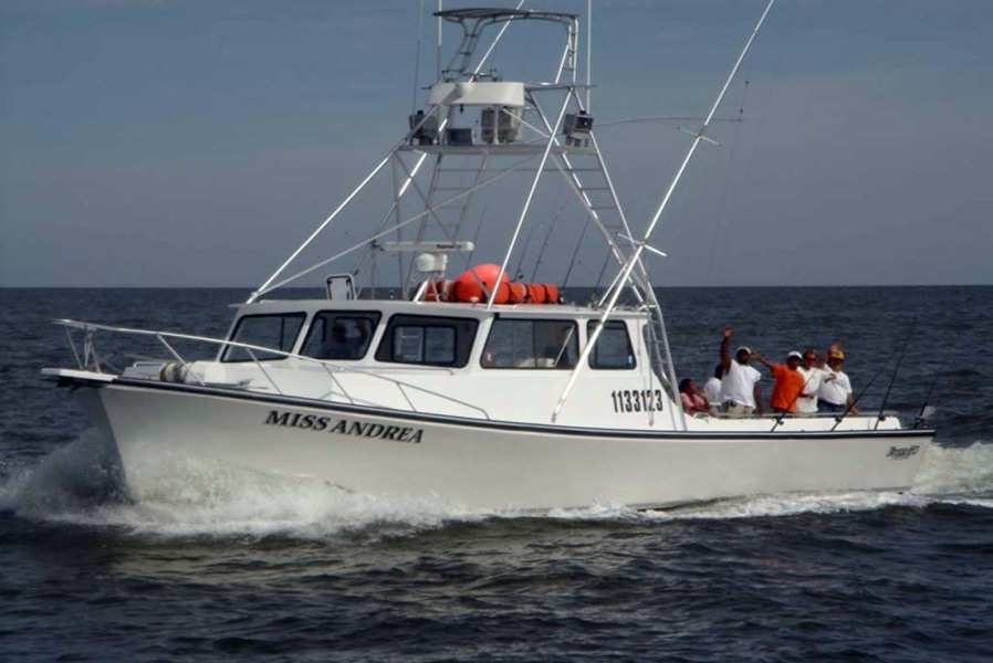 Photo of 50' Evans & Sons Express 2002