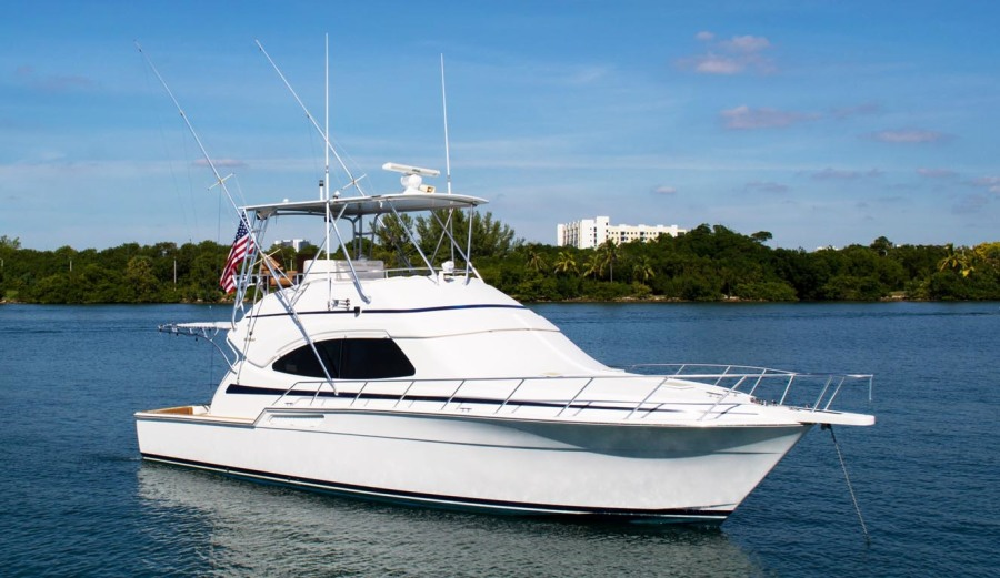 photo of 45' Bertram 450 Convertible 2002