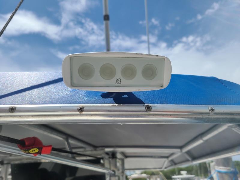 2020 31 Contender -Spot Light