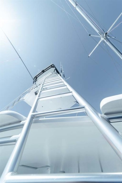 Hopewell Tower Ladder