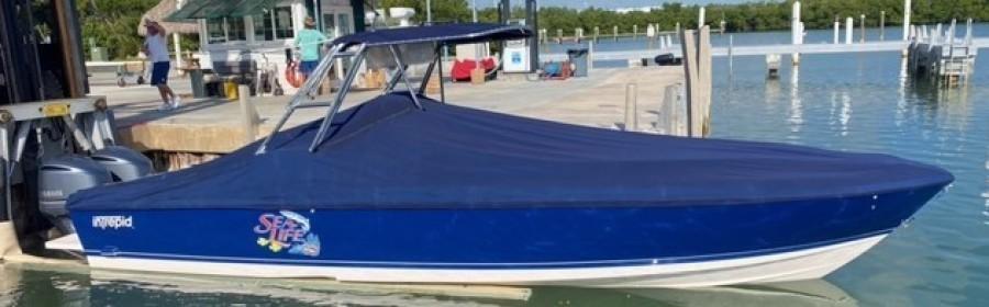 Intrepid-322 Cuddy 2001-Sea Life Marathon-Florida-United States-1628848-featured