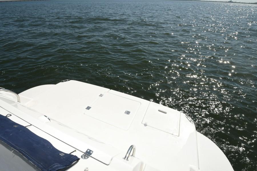 2007 42 Cruisers Express - Got Tubes II - Swim Platform