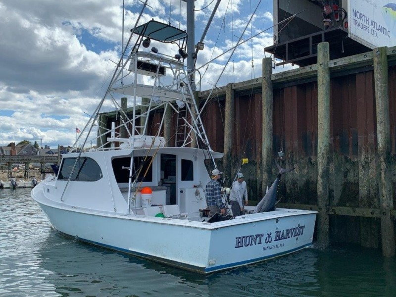 H&H Marine 40 - Hunt & Harvest - Portside Profile