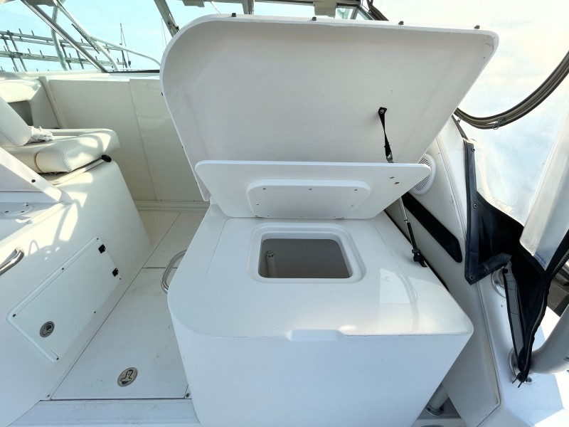 Helm Deck - Live Well and Ladder to Starboard