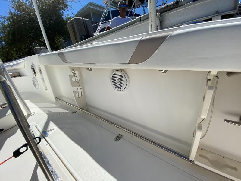 Boston Whaler 270 - Side Deck Sorage