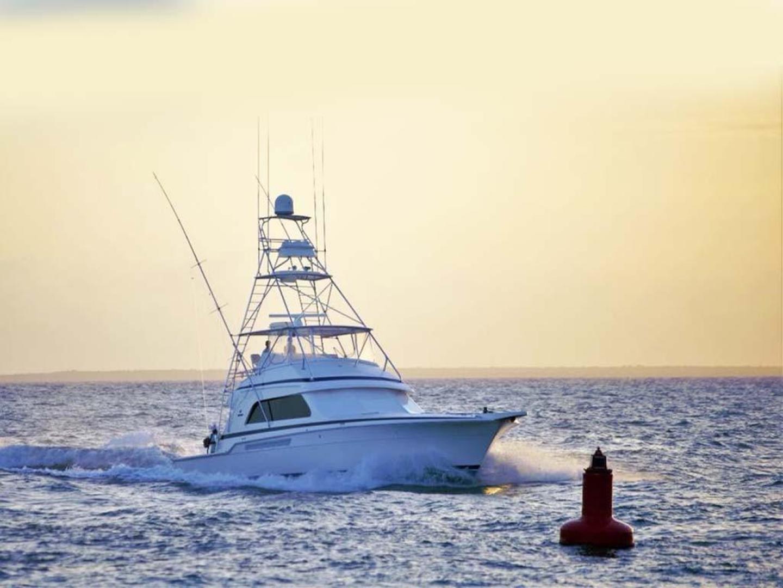 Bertram-54 Convertible 2000-Reel Healin Lighthouse Point-Florida-United States-2000 54 Bertram Profile-923997 | Thumbnail