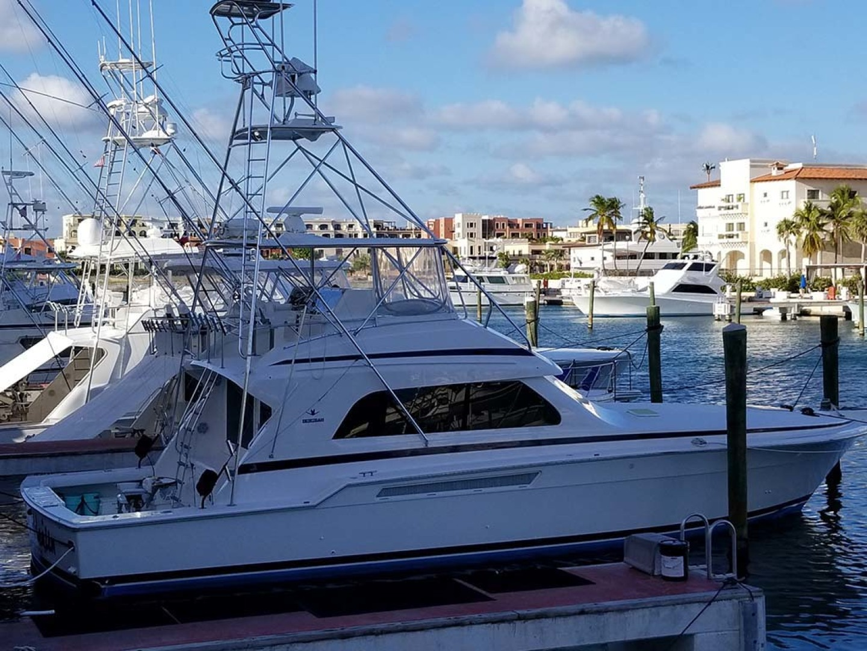 Bertram-54 Convertible 2000-Reel Healin Lighthouse Point-Florida-United States-At Dock-1065922 | Thumbnail