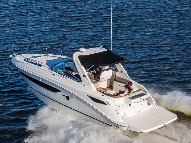 Sea Ray-350 Sundancer 2015-Tyeland Hyannis-Massachusetts-United States-Profile-930363 | Thumbnail
