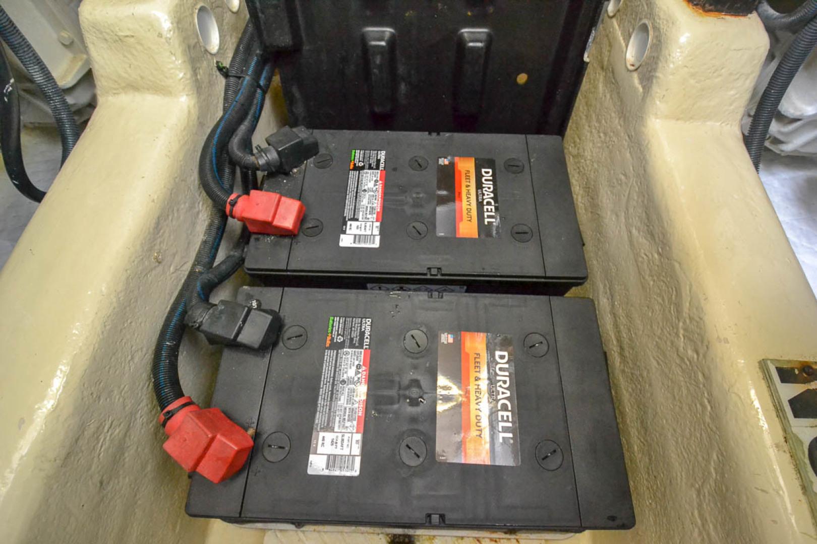 8D Batteries