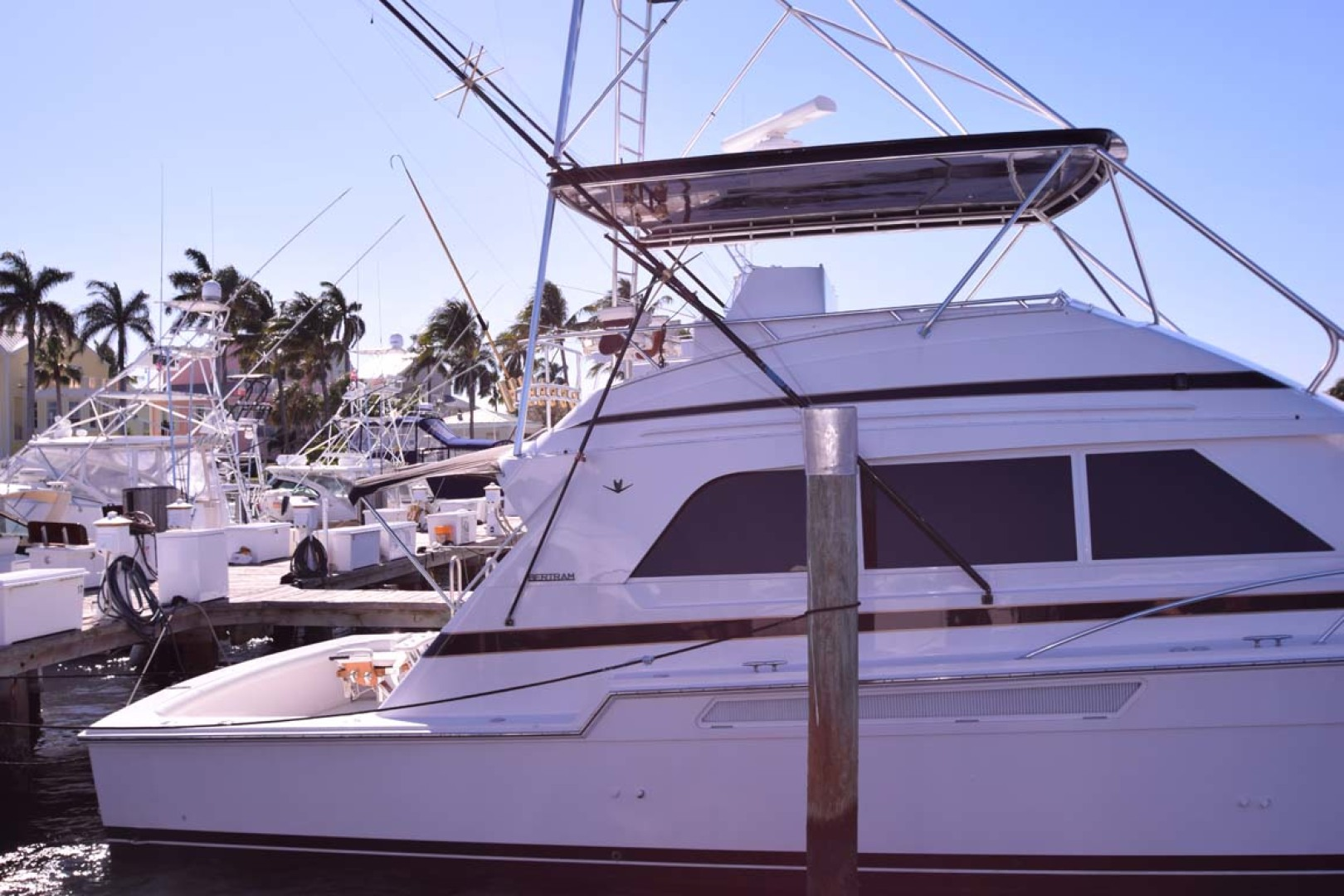 Bertram-60 Convertible 1998-CHARDAN Lighthouse Point-Florida-United States-Profile at Dock-1122641 | Thumbnail