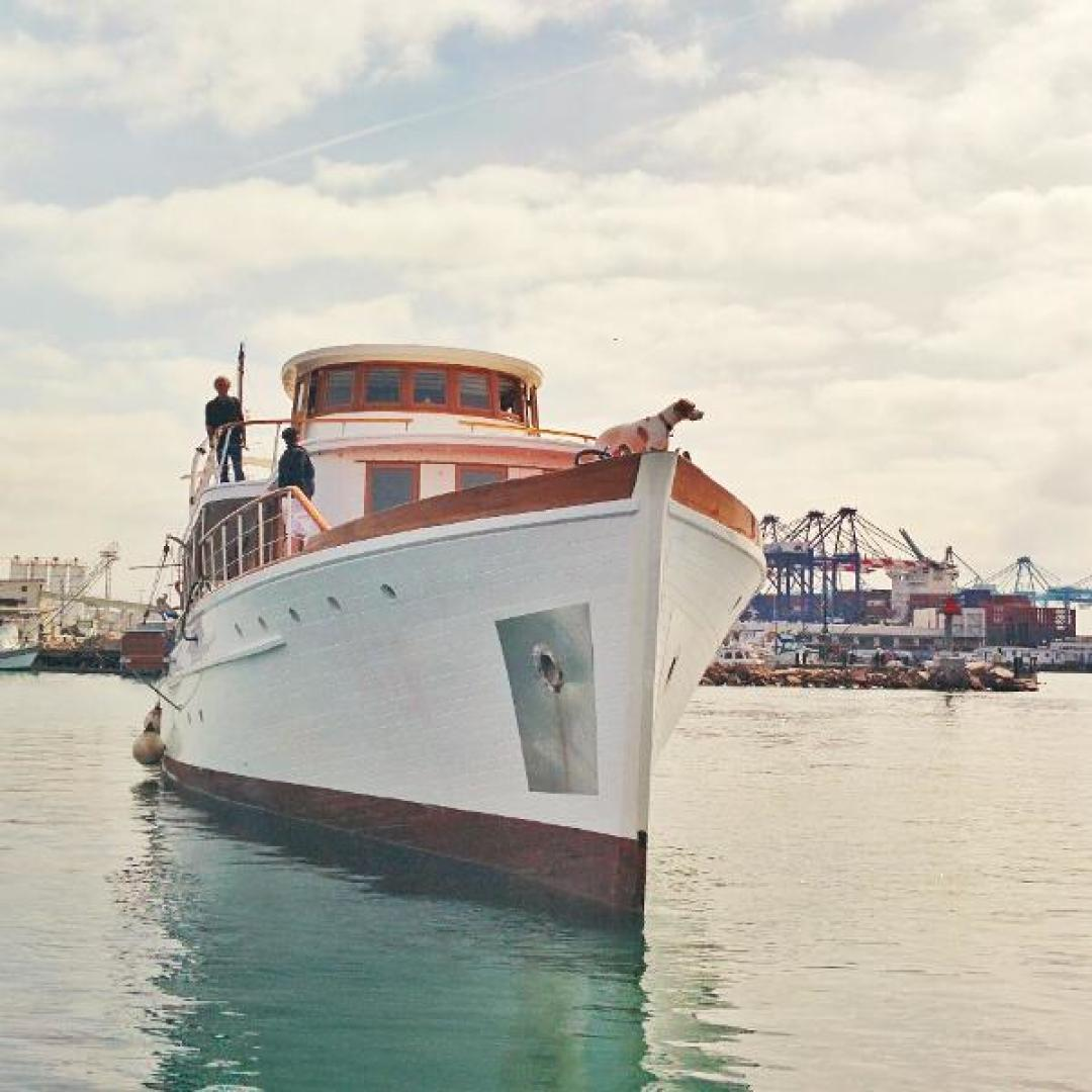 Picture Of: 105' Wilmington Wilmington 1929 Yacht For Sale | 2 of 57
