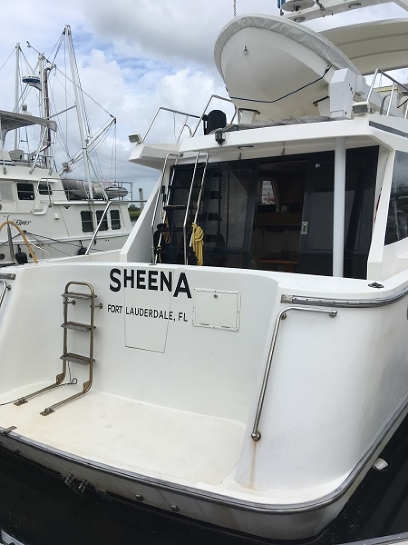 Picure of Sheena