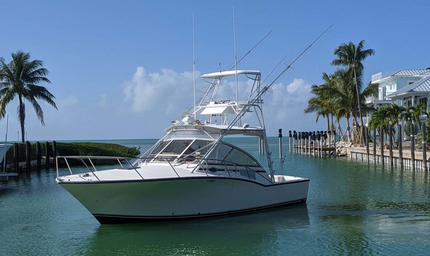 Carolina Classic-35 Express 2001-Fish Hard Key Largo-Florida-United States-Port Bow Profile-1289607 | Thumbnail