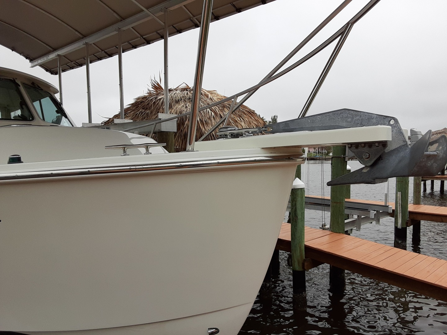 Back Cove-Express 2007-Patronus Cape Coral-Florida-United States-Starboard Bow-1341488 | Thumbnail