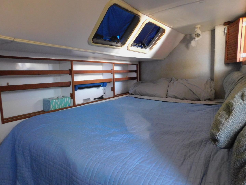 Endeavour-Catamaran 2000-Harmony Jacksonville-Florida-United States-1347936 | Thumbnail
