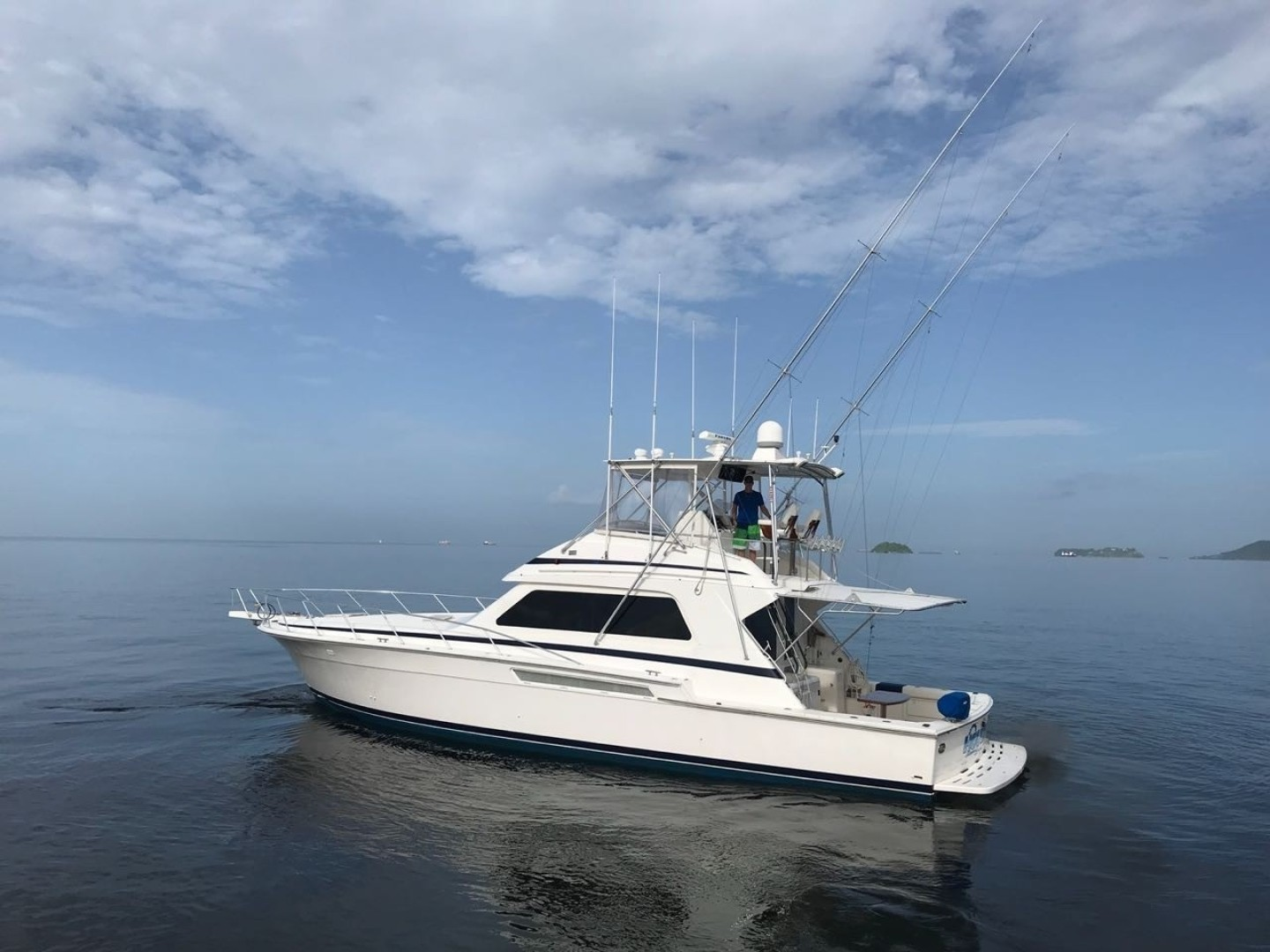 Picture Of: 54' Bertram 54 Convertible 1996 Yacht For Sale | 2 of 47