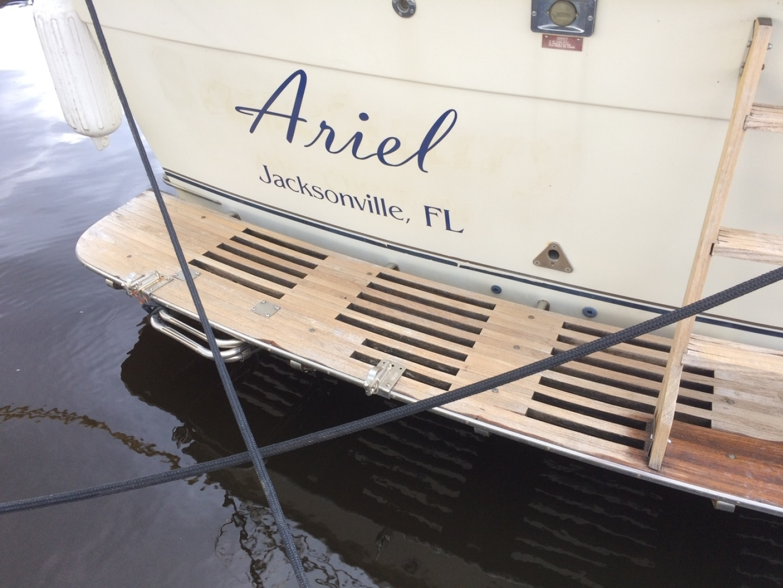 Picure of Ariel