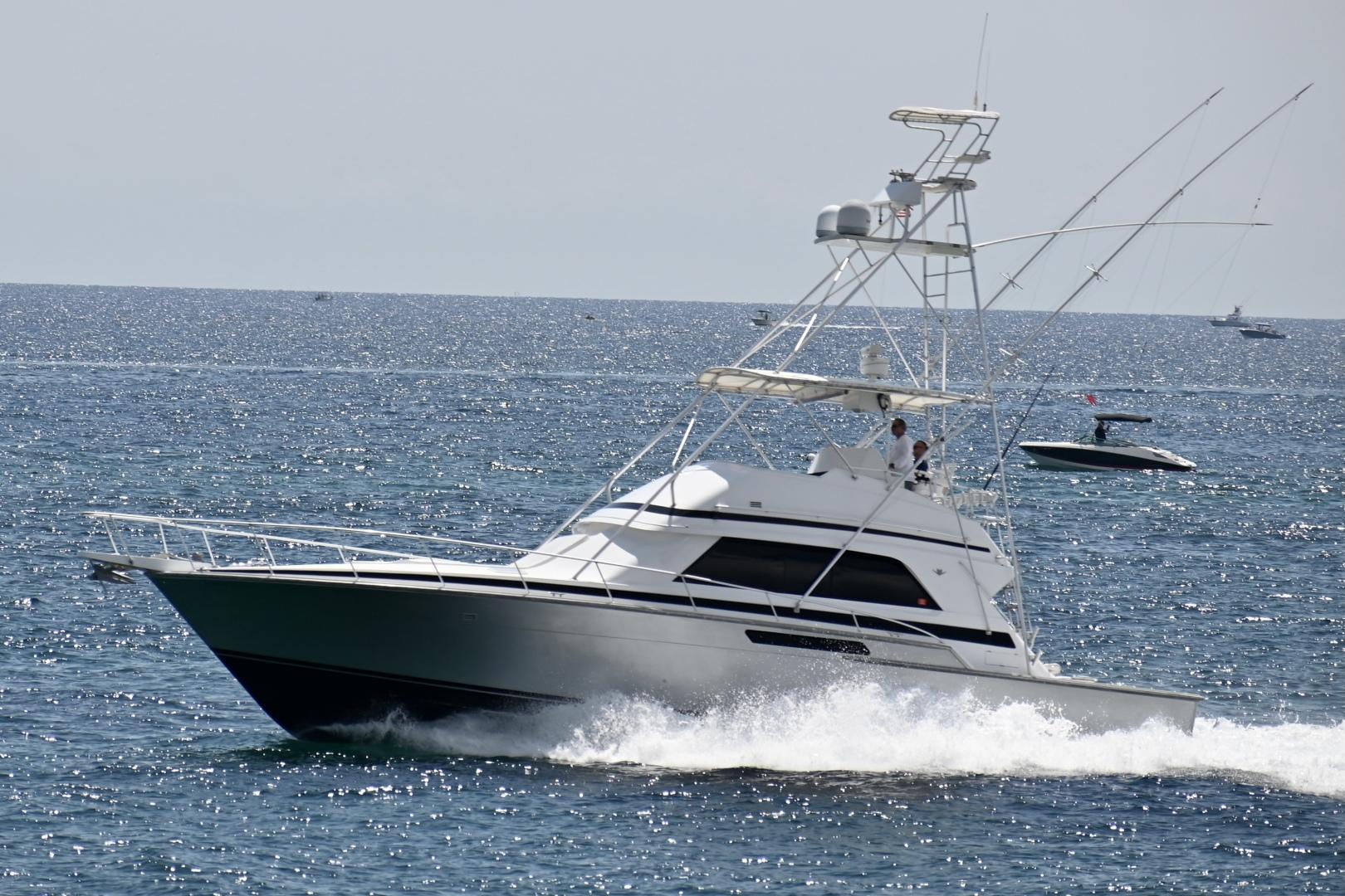 Bertram-50 Sportfish 1988-Fuggetaboutit Lighthouse Point-Florida-United States-1492276 | Thumbnail