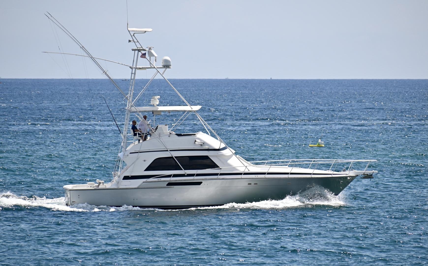 Bertram-50 Sportfish 1988-Fuggetaboutit Lighthouse Point-Florida-United States-1492275 | Thumbnail