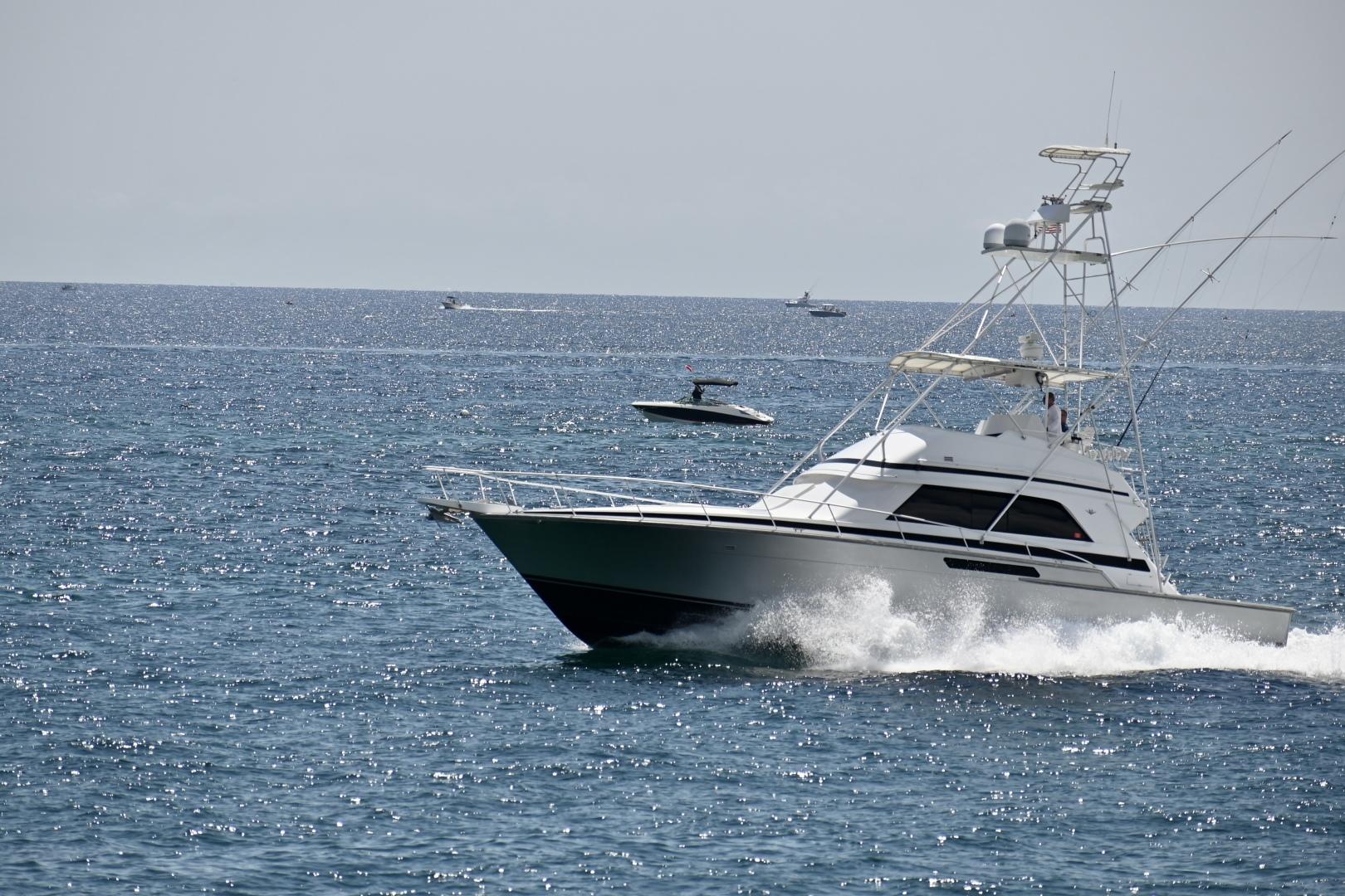 Bertram-50 Sportfish 1988-Fuggetaboutit Lighthouse Point-Florida-United States-1492277 | Thumbnail