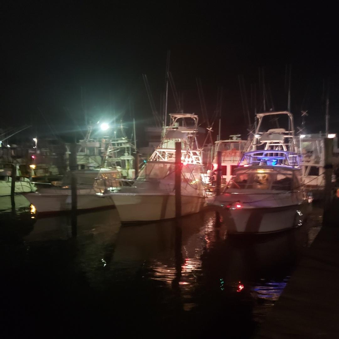Topaz-33 Express 2010-Yellow Fish Ocean City-Maryland-United States-1537760 | Thumbnail
