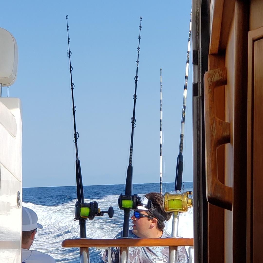 Topaz-33 Express 2010-Yellow Fish Ocean City-Maryland-United States-1537748 | Thumbnail