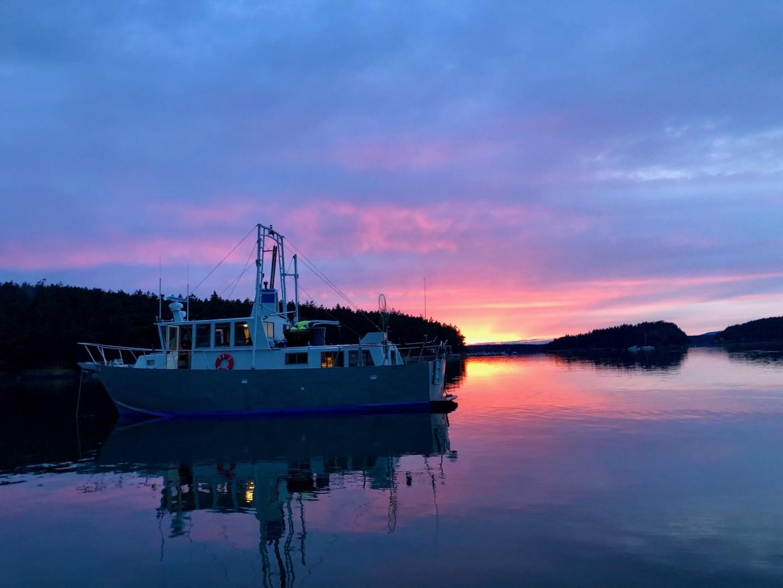 Ted Brewer-Custom 41 Trawler 1990-Snapdragon Anacortes-Washington-United States-1520054 | Thumbnail