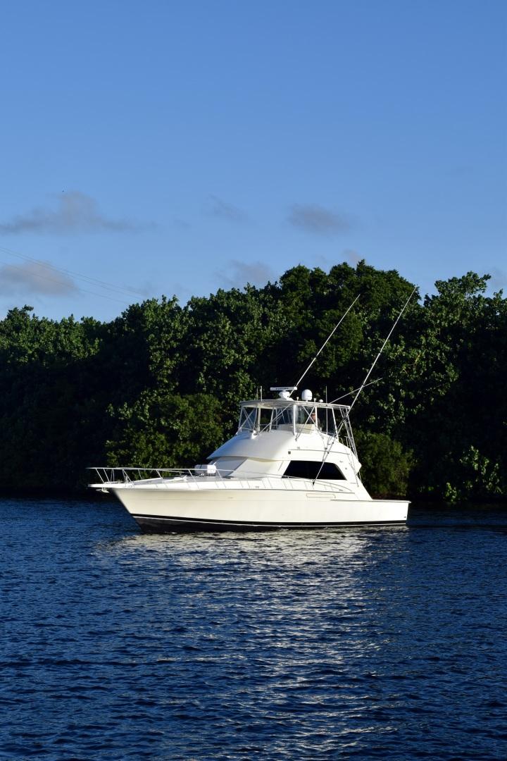 Bertram-Convertible 1988-Sea Bandit North Palm Beach -Florida-United States-1537731 | Thumbnail