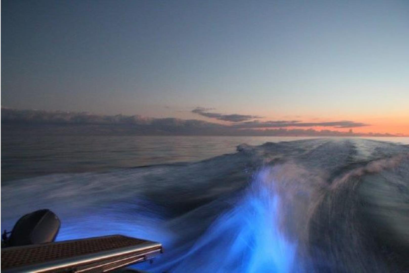 Azimut-Flybridge Motor Yacht 2000 -Boca Raton-Florida-United States-1564098 | Thumbnail