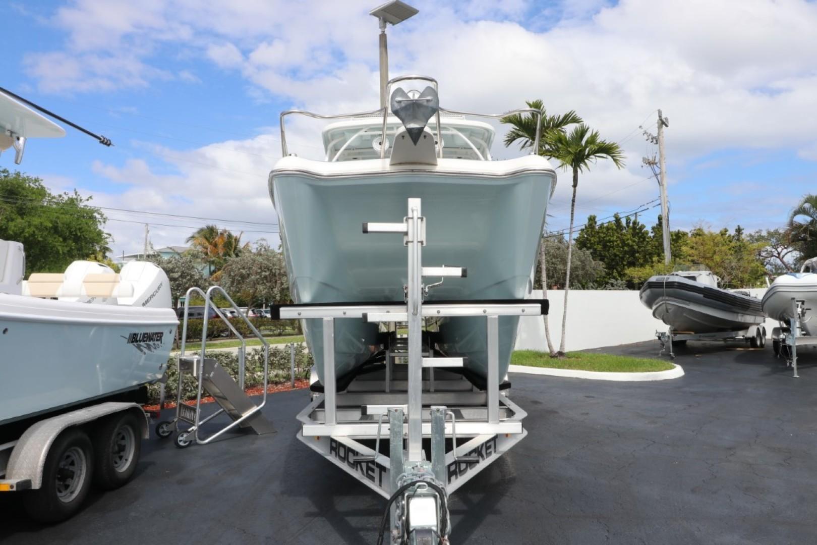 World Cat-255 DC 2019 -Palm Beach-Florida-United States-1631186 | Thumbnail