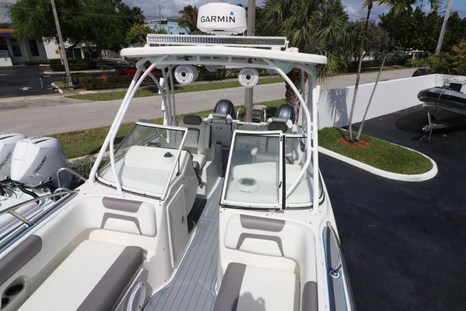 World Cat-255 DC 2019 -Palm Beach-Florida-United States-1631202 | Thumbnail