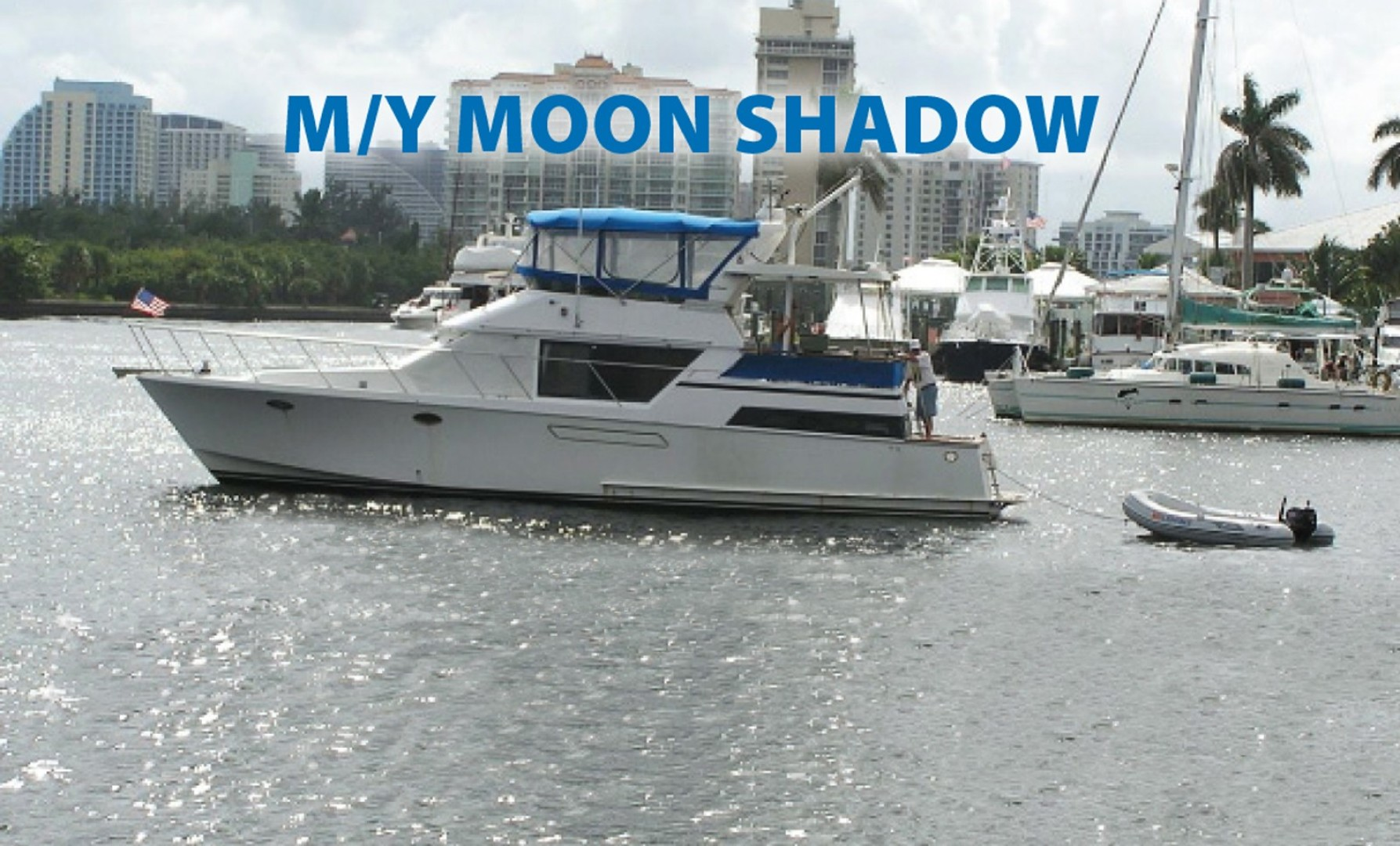 Picture of Moonshadow