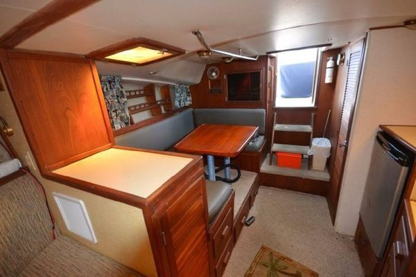 1984Topaz 36 ft Express 36   Lady Gator