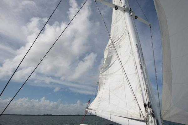 1988 Lagoon 55' 550 TELESTIAL DISTRACTION | Picture 8 of 34