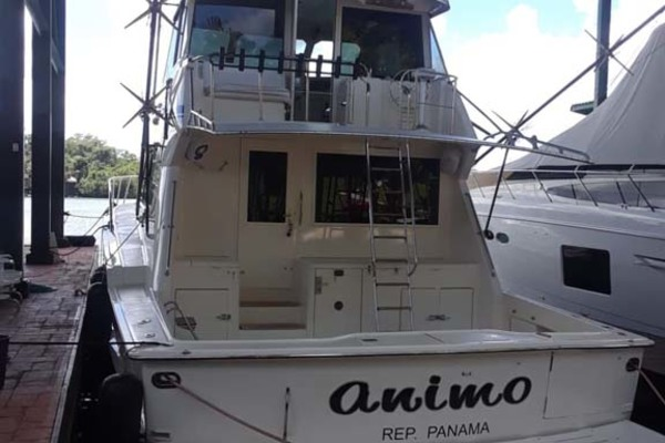 1992 Hatteras 58' Convertible Animo ll | Picture 7 of 32