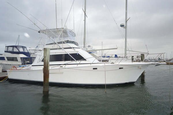 43' Egg Harbor 43 Sportfish Convertible 1987 | Island Daze
