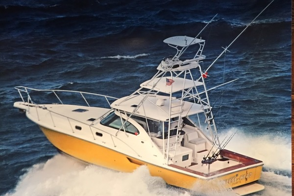 38-ft-Pursuit-2002-Express-Cheese Head Stuart Florida United States  yacht for sale