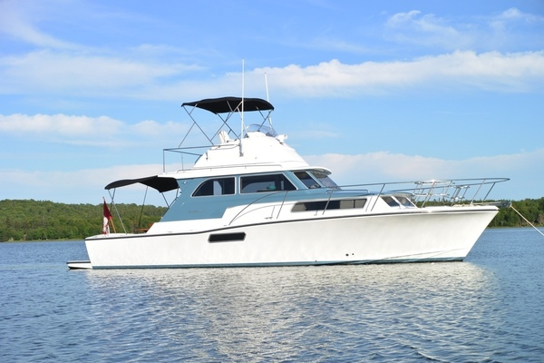 Picture Of: 41' Bertram 2013 Yacht For Sale | 1 of 3
