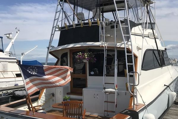 1989 Egg Harbor 54' 54 Convirtible Flybridge Nestegg | Picture 3 of 69