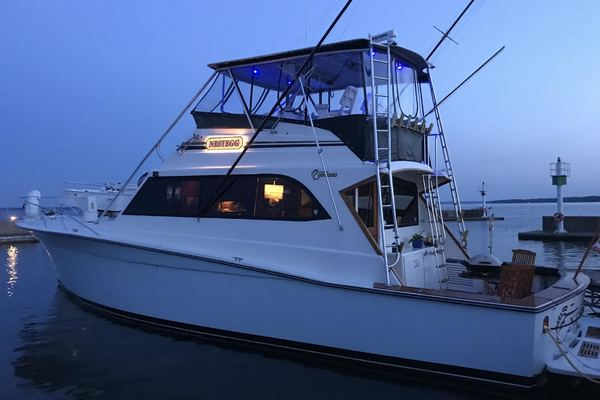 1989 Egg Harbor 54' 54 Convirtible Flybridge Nestegg | Picture 6 of 69