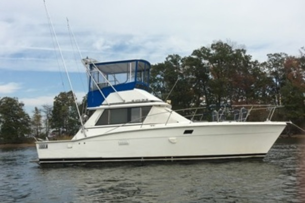 36-ft-Trojan-1978-F-36 Sportfisherman-Duck Blind Glenn Bernie Maryland United States  yacht for sale