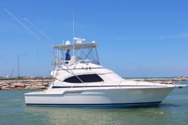 39' Bertram 39 Convertible 2002 | Witt's End