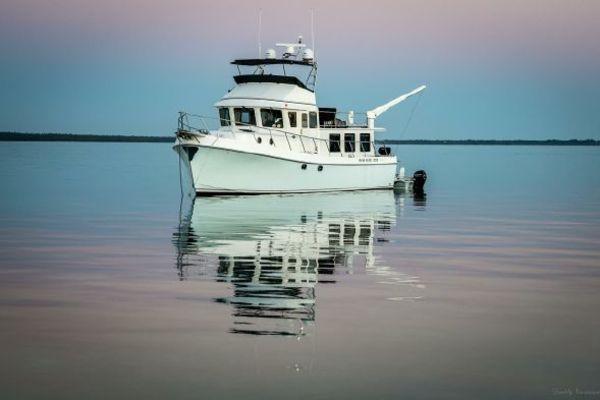 49' American Tug  2021 |