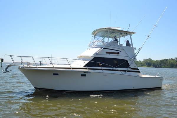 38-ft-Bertram-1985-38 III Convertible-Firefly Tracys Landing Maryland United States  yacht for sale