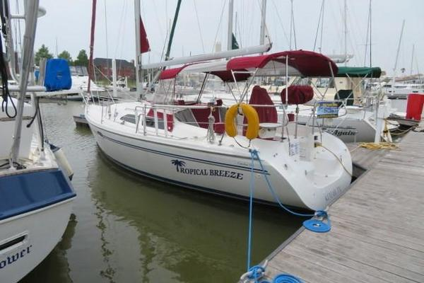 31' Catalina 310 2004 | Tropical Breeze