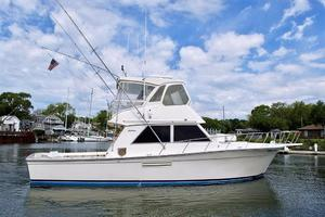 photo of Henriques 44 Sportfish -