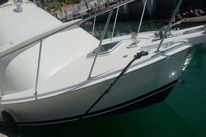 photo of Bertram Custom Abaroa Sportfishing - Molly