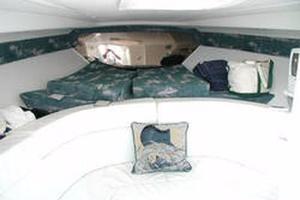 photo of Intrepid-356-Cuddy-2000-Yasou-St.-Thomas-Virgin-Islands-(US)-Forward-Berth-370034