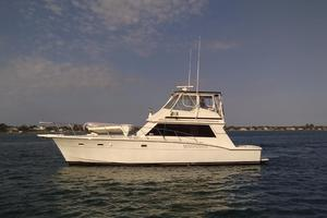 photo of Hatteras-50-Convertible-1981-2009-Repower-Stuart-Florida-United-States-Profile-372060